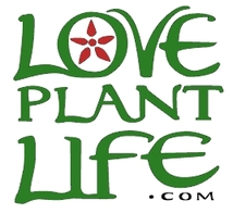 LovePlantLife.com